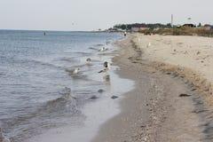 θαλάσσιο νερό χαλικιών ακτών χαμηλή παλίρροια επίδρασης στοκ εικόνα