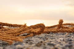 Θαλάσσιο σχοινί Στοκ εικόνες με δικαίωμα ελεύθερης χρήσης