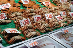 θαλασσινά αγοράς της Ιαπωνίας Στοκ φωτογραφίες με δικαίωμα ελεύθερης χρήσης