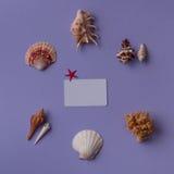 Θαλασσινά κοχύλια γύρω από την κάρτα δώρων Στοκ Φωτογραφίες