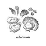 Θαλασσινά Οστρακόδερμα, μύδια, όστρακα, στρείδια, λαβίδες απεικόνιση αποθεμάτων