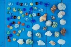 Θαλασσινό κοχύλι συλλογής της Shell στοκ φωτογραφία με δικαίωμα ελεύθερης χρήσης