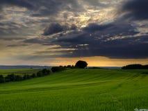 Θεαματικά σύννεφα και χρυσό φως του ήλιου αμέσως πριν από ένα ηλιοβασίλεμα θερινού ηλιοστάσιου πέρα από τους κυλώντας τομείς σίτο στοκ φωτογραφία