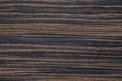 Θεαματική σύσταση καπλαμάδων με τα ασυνήθιστα χρώματα Στοκ εικόνες με δικαίωμα ελεύθερης χρήσης