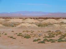 Θεαματικό πανόραμα Ketthara, ένα φρεάτιο νερού στο αφρικανικό τοπίο ερήμων Σαχάρας κοντά στην πόλη Erfoud στο Μαρόκο Στοκ Εικόνες
