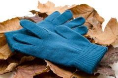 Θελήστε τα γάντια με το φύλλωμα στοκ φωτογραφίες