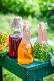 Θεραπεία των χορταριών στα μπουκάλια ως σπιτική θεραπεία Στοκ Εικόνες