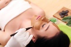 Θεραπεία SPA για τη νέα γυναίκα που έχει την του προσώπου μάσκα στο σαλόνι ομορφιάς - στο εσωτερικό στοκ φωτογραφία με δικαίωμα ελεύθερης χρήσης