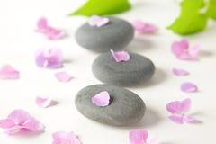 Θεραπεία stones  Στοκ εικόνες με δικαίωμα ελεύθερης χρήσης