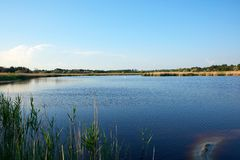θεραπευτική λίμνη με το ιώδιο και μεταλλεύματα στη μέση της άγριας στέπας στοκ φωτογραφία με δικαίωμα ελεύθερης χρήσης