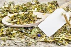 Θεραπευτικό φυσικό βοτανικό τσάι Στοκ Εικόνες