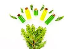 Θεραπεύοντας έννοια πετρελαίου ιουνιπέρων Aromatheraphy Μπουκάλια και srpigs στο άσπρο διάστημα αντιγράφων άποψης υποβάθρου τοπ Στοκ Εικόνες