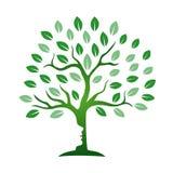 Θεραπεύοντας εικονίδιο δέντρων Στοκ Φωτογραφίες