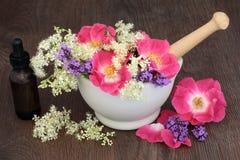 Θεραπεύοντας λουλούδια και χορτάρια Στοκ εικόνες με δικαίωμα ελεύθερης χρήσης