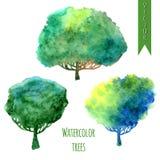 Θερινά δέντρα Διανυσματικό σύνολο Watercolor δέντρων Στοκ εικόνες με δικαίωμα ελεύθερης χρήσης