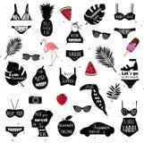 Θερινά εικονίδια Το διανυσματικό μπικίνι, φύλλα φοινικών, toucan πουλί, φλαμίγκο, γυαλιά ηλίου, αυτοκίνητο, γυναίκες διευθύνει, κ Στοκ Εικόνες