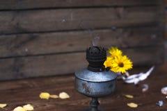 Θερινά κίτρινα λουλούδια σε μια άσπρη ζωή κύκλων ακόμα Στοκ Φωτογραφίες
