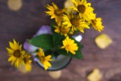 Θερινά κίτρινα λουλούδια σε μια άσπρη ζωή κύκλων ακόμα Στοκ Φωτογραφία
