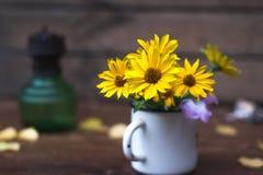 Θερινά κίτρινα λουλούδια σε μια άσπρη ζωή κύκλων ακόμα Στοκ εικόνα με δικαίωμα ελεύθερης χρήσης