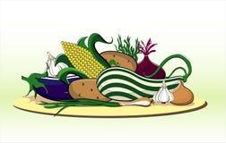 θερινά λαχανικά πιάτων Στοκ Εικόνες