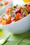 θερινά λαχανικά σαλάτας ρ&u Στοκ φωτογραφία με δικαίωμα ελεύθερης χρήσης