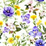 Θερινά λουλούδια, χλόες λιβαδιών, χορτάρια άνοιξης φυσικός άνευ ραφής ανασκό&p Watercolor στο μπλε χρώμα διανυσματική απεικόνιση