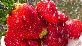 θερινά μούρα, ώριμες φράουλες απόθεμα βίντεο