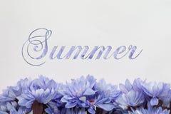 Θερινά λουλούδια - κείμενο με τα άνθη Στοκ φωτογραφία με δικαίωμα ελεύθερης χρήσης