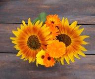 Θερινά λουλούδια Στοκ φωτογραφίες με δικαίωμα ελεύθερης χρήσης