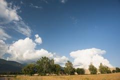 Θερινά πεδία με τα σύννεφα Στοκ εικόνα με δικαίωμα ελεύθερης χρήσης
