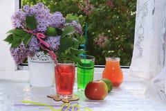 Θερινά ποτά με τα φρούτα σε ένα υγρό ανοικτό παράθυρο στον κήπο στοκ φωτογραφία με δικαίωμα ελεύθερης χρήσης