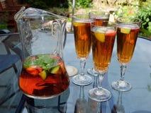 Θερινά ποτά Στοκ Εικόνα