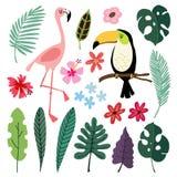 Θερινά τροπικά γραφικά στοιχεία Πουλιά Toucan και φλαμίγκο Floral απεικονίσεις ζουγκλών, φοίνικας, φύλλα monstera απεικόνιση αποθεμάτων