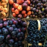 Θερινά φρούτα στοκ φωτογραφία