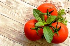 Θερινά χορτοφάγα τρόφιμα, τρεις ντομάτες με τα αρωματικά χορτάρια στοκ εικόνα