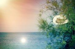 Θερινές διακοπές στην όμορφη θέση Στοκ Εικόνες