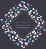 Θερινές floral διακοσμήσεις Στοκ εικόνα με δικαίωμα ελεύθερης χρήσης