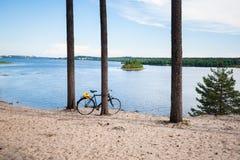 Θερινή άποψη πέρα από τον ποταμό Lule στη βόρεια Σουηδία Στοκ Εικόνες
