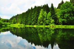 Θερινή λίμνη στοκ εικόνες με δικαίωμα ελεύθερης χρήσης
