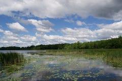 Θερινή λίμνη στοκ φωτογραφίες