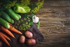 Θερινή ακόμα ζωή των ώριμων λαχανικών και του άνηθου Στοκ Φωτογραφίες