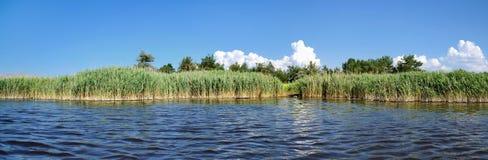 Θερινή αλατισμένη λίμνη Στοκ εικόνα με δικαίωμα ελεύθερης χρήσης