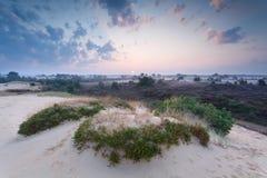 Θερινή ανατολή της Misty πέρα από τον αμμόλοφο άμμου Στοκ Εικόνες