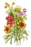 Θερινή ανθοδέσμη των λουλουδιών διανυσματική απεικόνιση