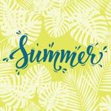 Θερινή αφίσα Γράφοντας κείμενο χεριών στο υπόβαθρο φύλλων παλαμών Σύγχρονη αφίσα, κάρτα, ιπτάμενο, μπλούζα, σχέδιο ενδυμασίας Στοκ Φωτογραφία