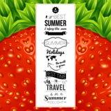 Θερινή αφίσα Οπτικό σχέδιο υποβάθρου φραουλών Διάνυσμα άρρωστο Στοκ Φωτογραφία