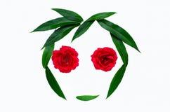 Θερινή αφηρημένη σύνθεση - σκιαγραφία ενός προσώπου από τα πράσινα φύλλα και τα τριαντάφυλλα Η έννοια της φυσικών ομορφιάς και τη Στοκ Εικόνες