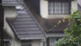 Θερινή βροχή που αφορά τα αγροτικά σπίτια, σταγόνες βροχής που ρέουν κάτω κατά μήκος της στέγης απόθεμα βίντεο