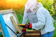 θερινή ηλιόλουστη εργασία δύο ημέρας beekeepers μελισσουργείων Καλοκαίρι στοκ φωτογραφίες