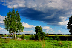 Θερινή ημέρα, η λεπτή ομορφιά της δασικός-στέπας της Ρωσίας Στοκ Εικόνες